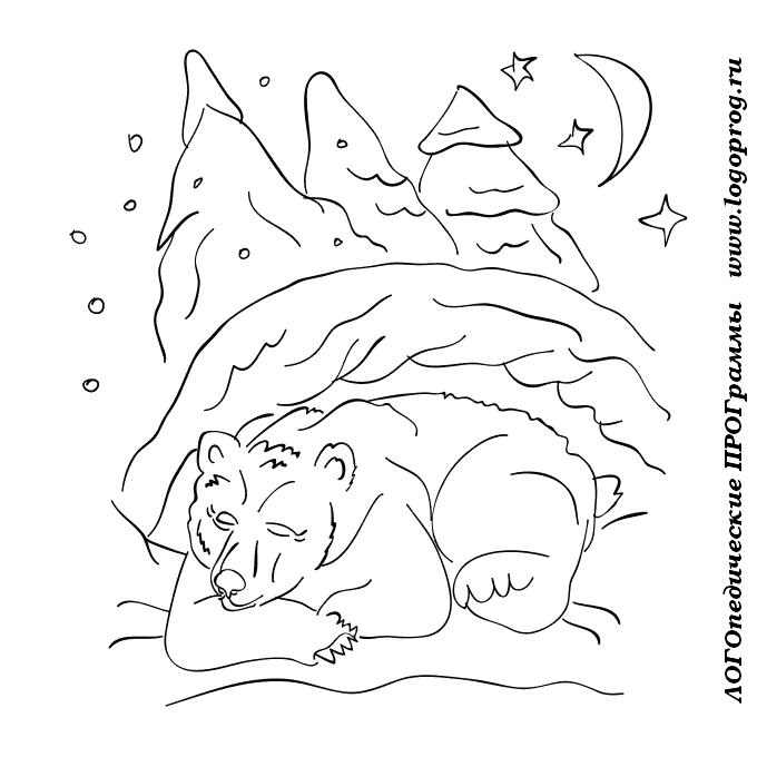 Раскраска медведь зимой