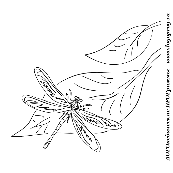 Картинки стрекоза и муравей картинки раскраски